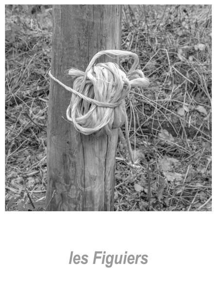 les Figuiers 1.5w.jpg