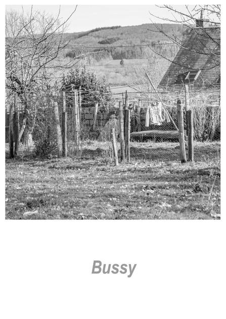 Bussy 1.14w.jpg