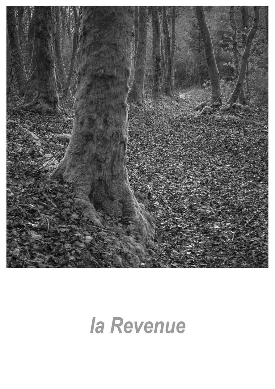 la Revenue 1.4w.jpg