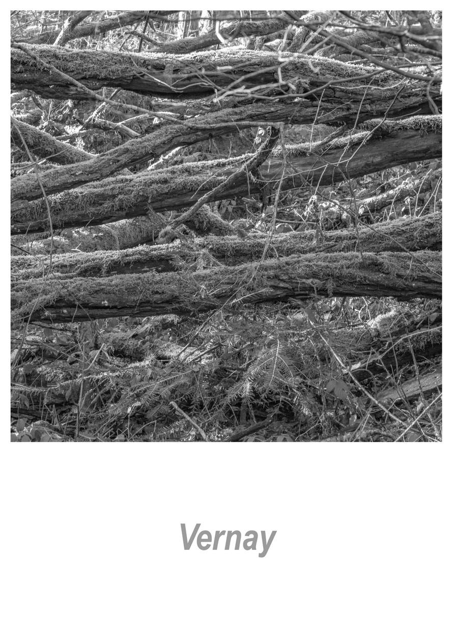Vernay 1.4w.jpg