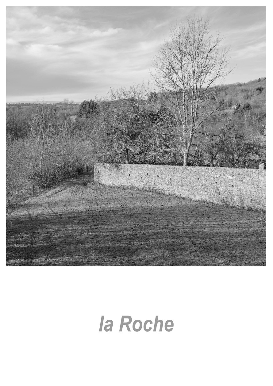 la Roche 1.3w.jpg