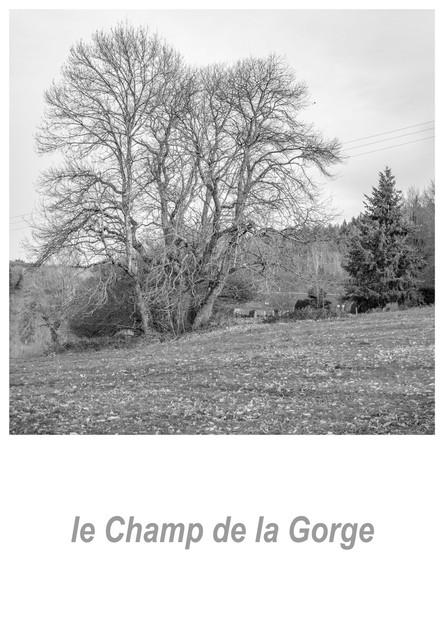 le Champ de la Gorge 1.1w.jpg