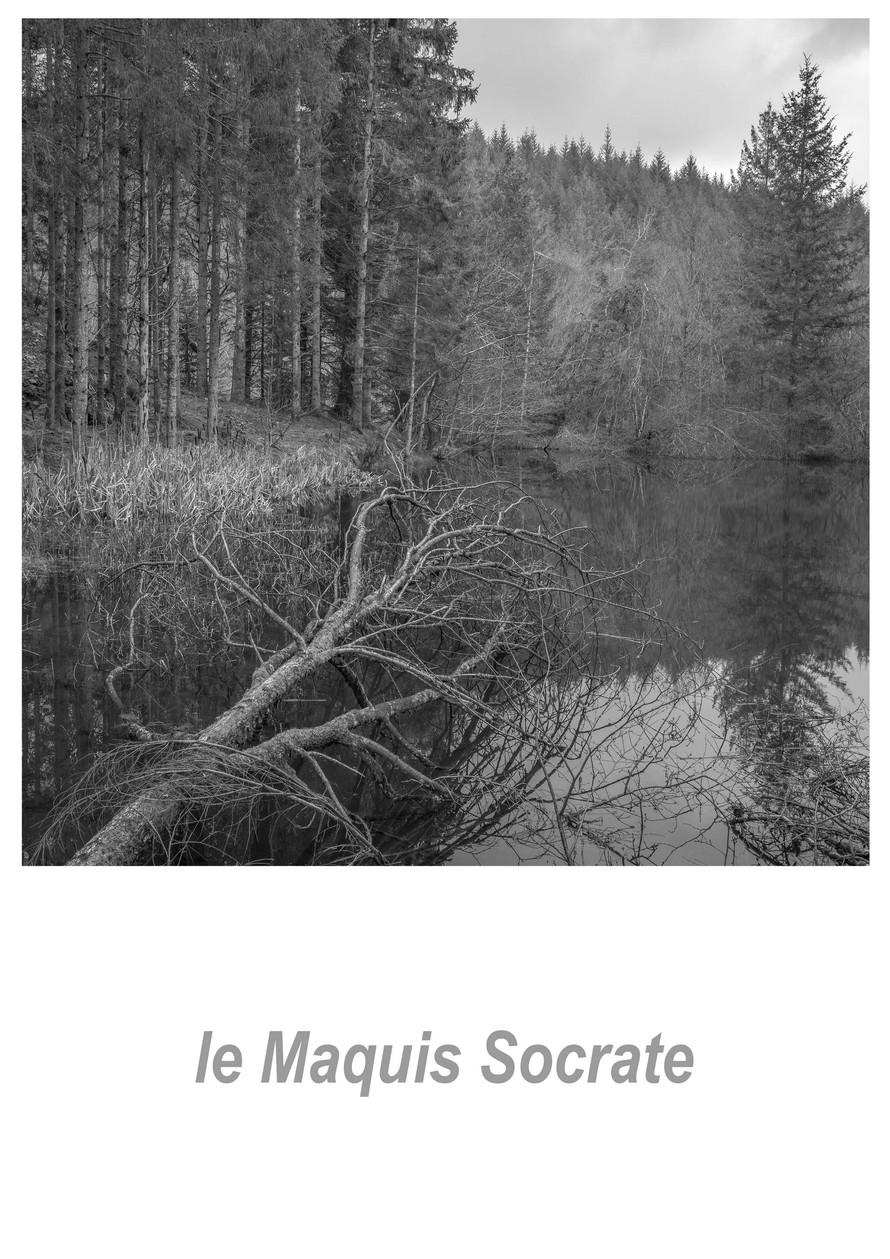 le Maquis Socrate 1.2w.jpg