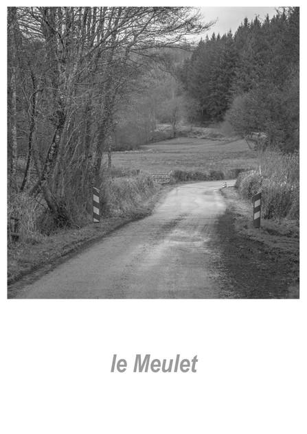 le Meulet 1.3w.jpg