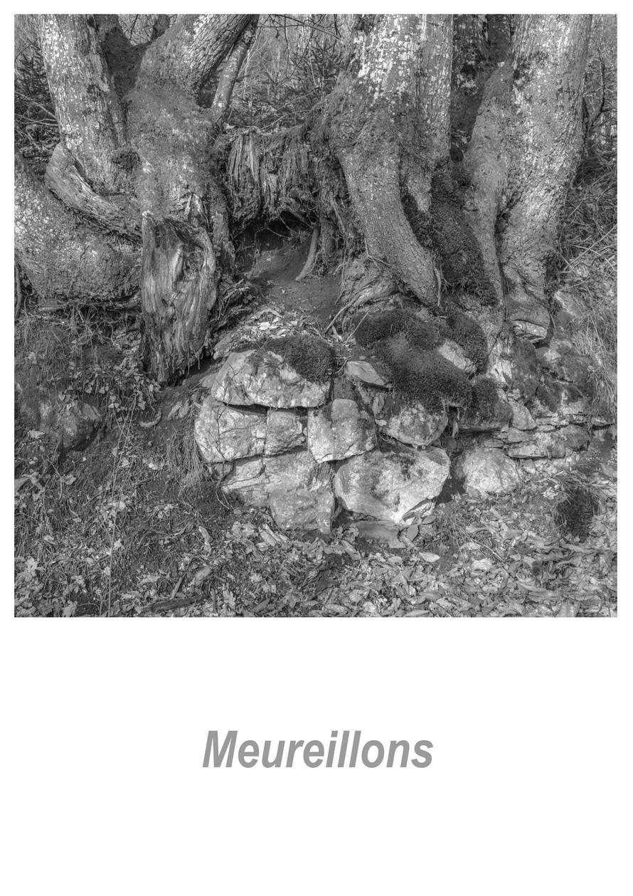Meureillons 1.5w.jpg
