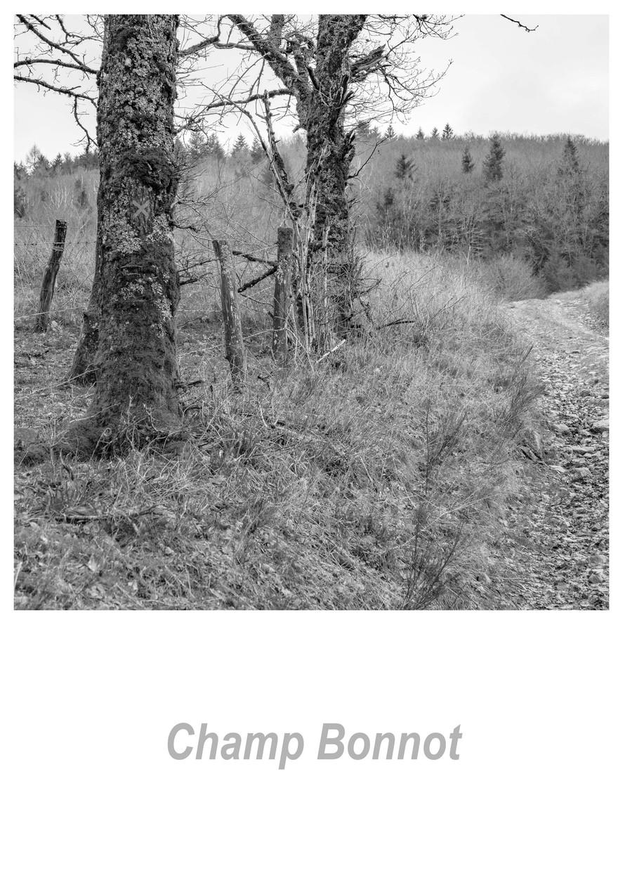 Champ Bonnot 1.1w.jpg