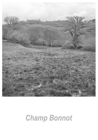 Champ Bonnot 1.3w.jpg