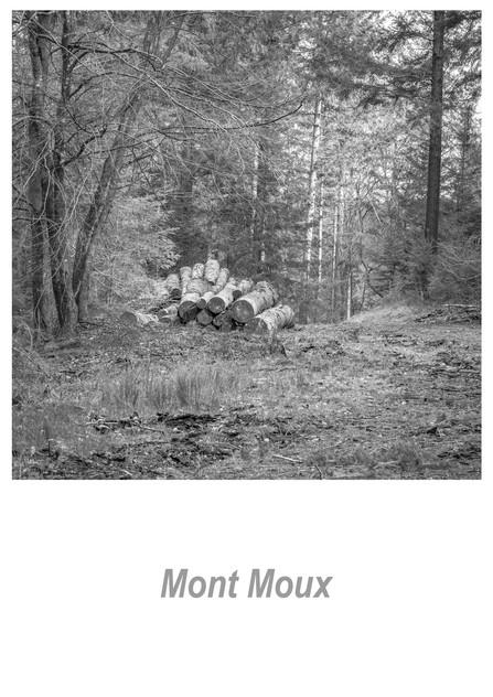 Mont Moux 1.1w.jpg