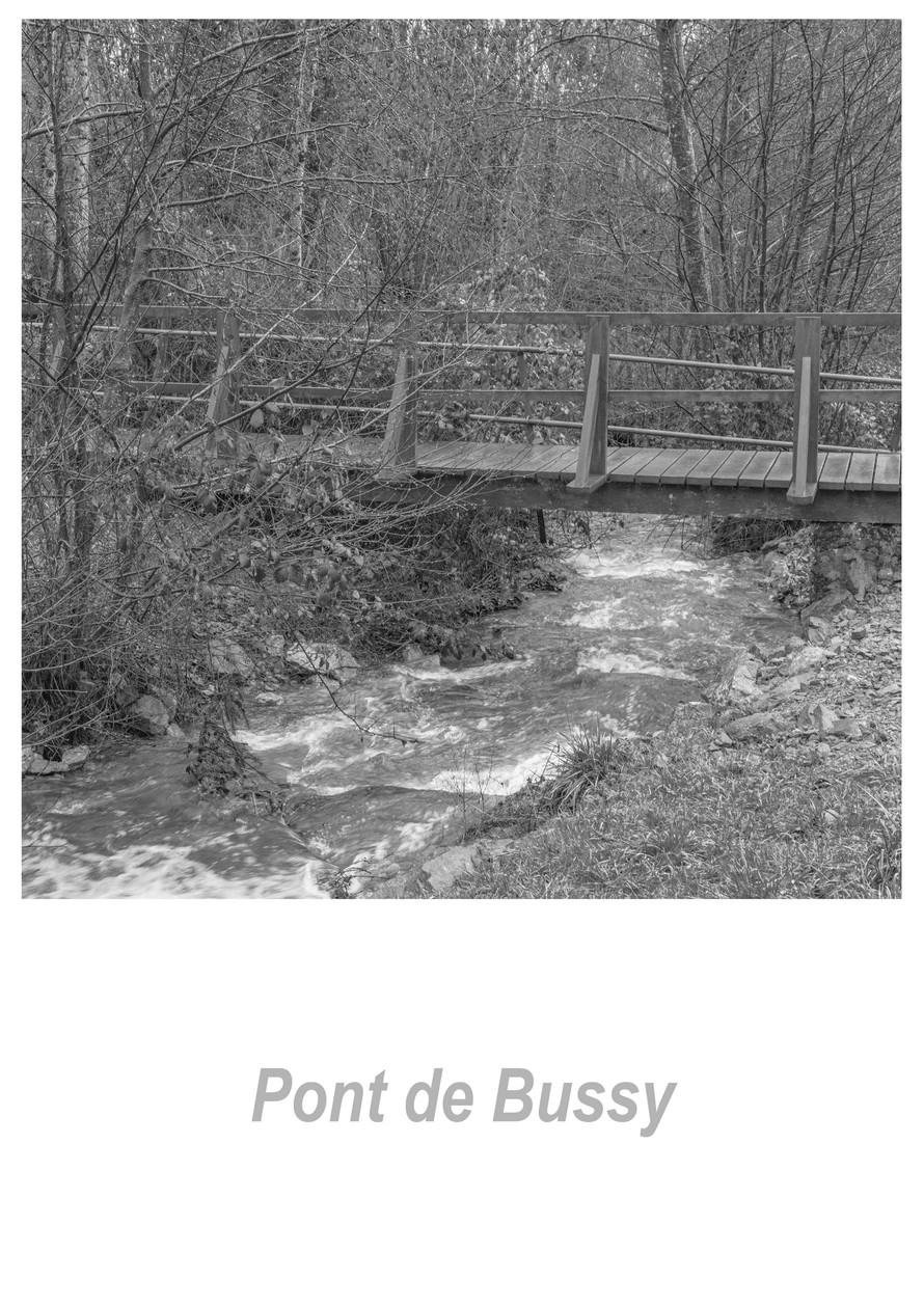 Pont de Bussy 1.1w.jpg