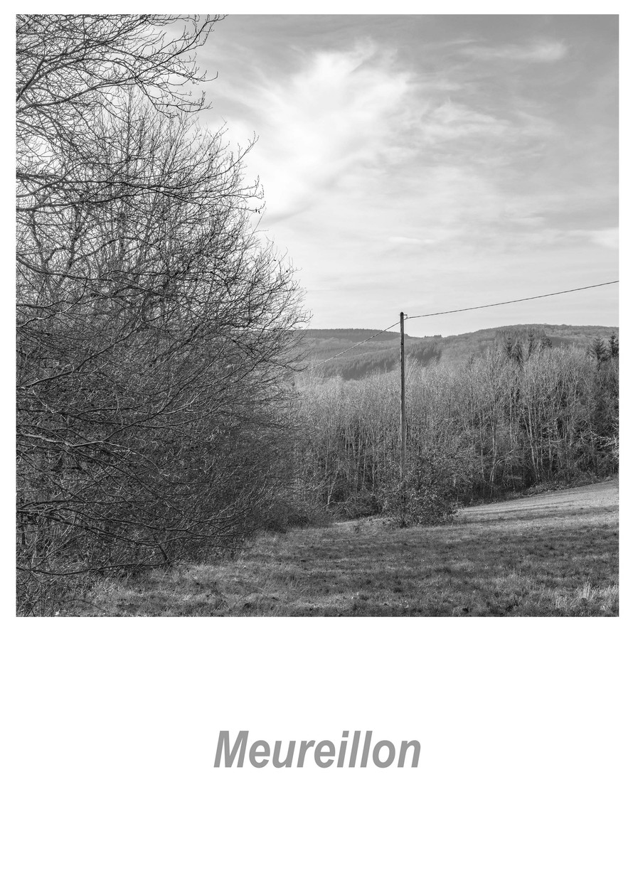 Meureillon 1.2w.jpg