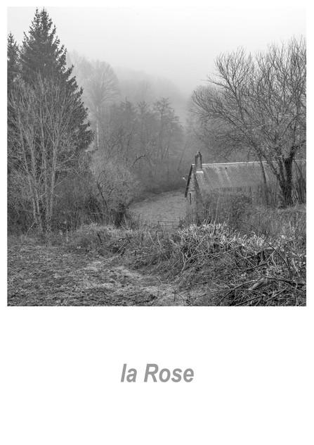 la Rose 1.2w.jpg