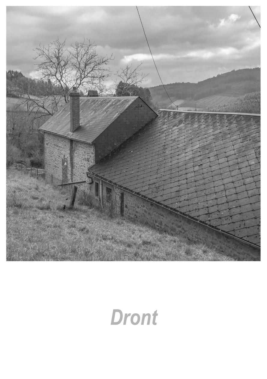 Dront 1.9w.jpg