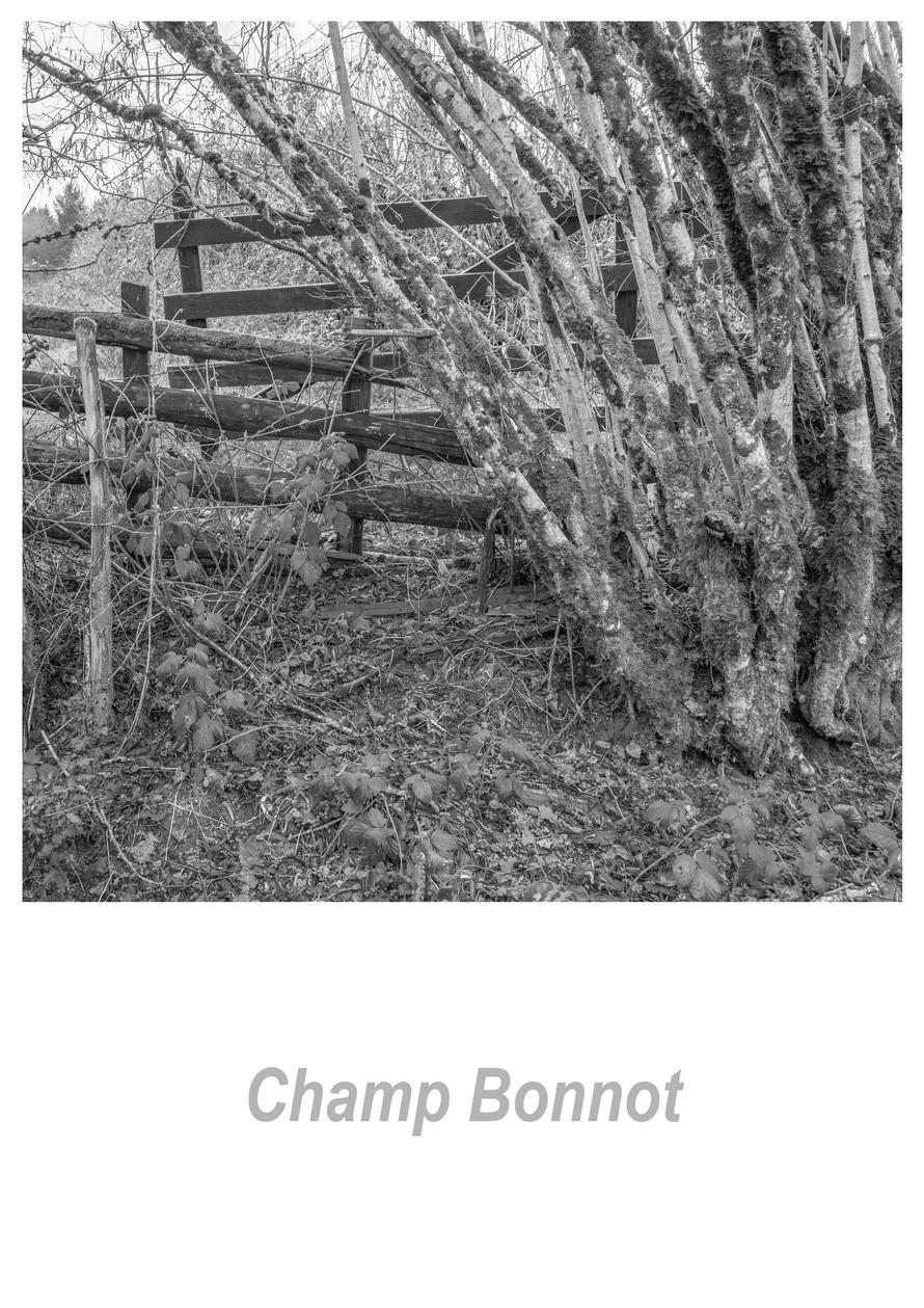 Champ Bonnot 1.4w.jpg