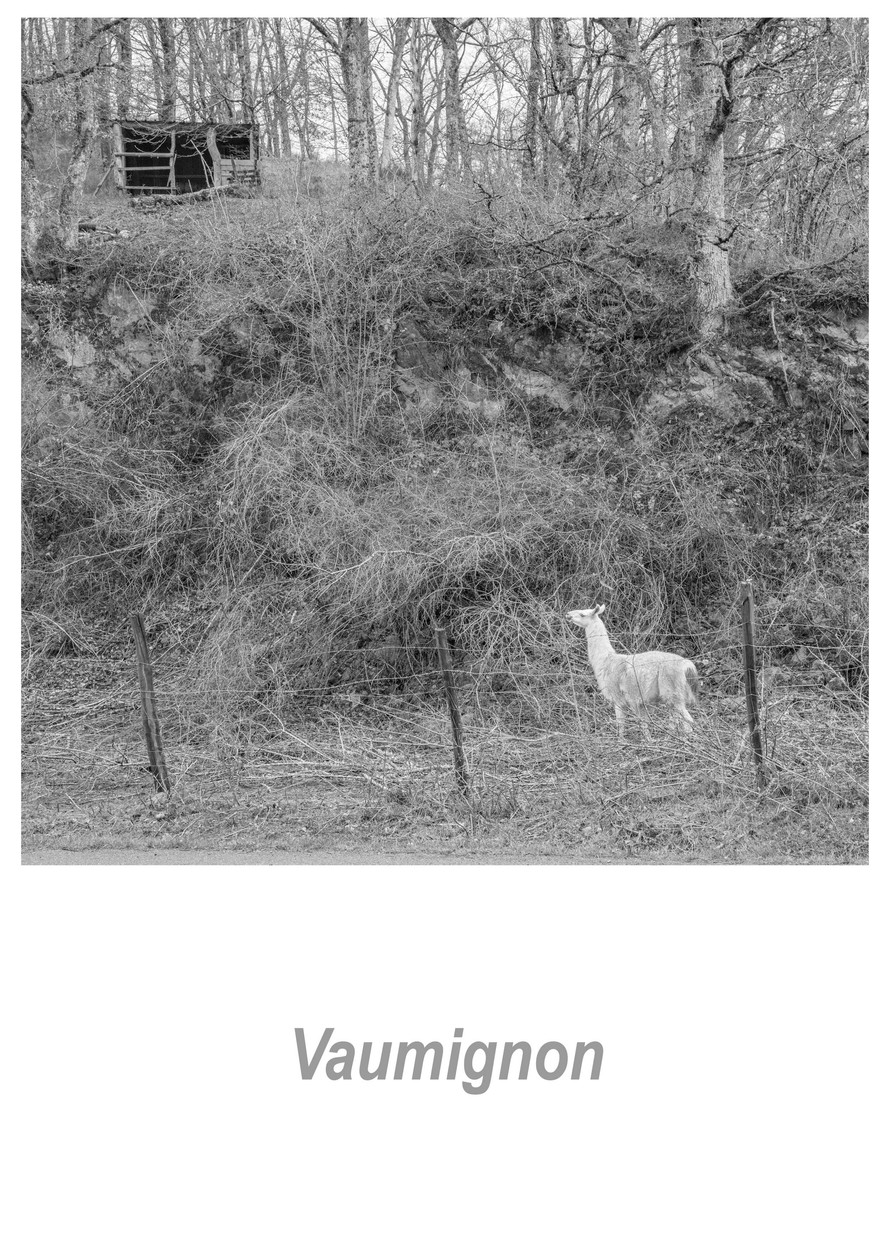 Vaumignon 1.15w.jpg