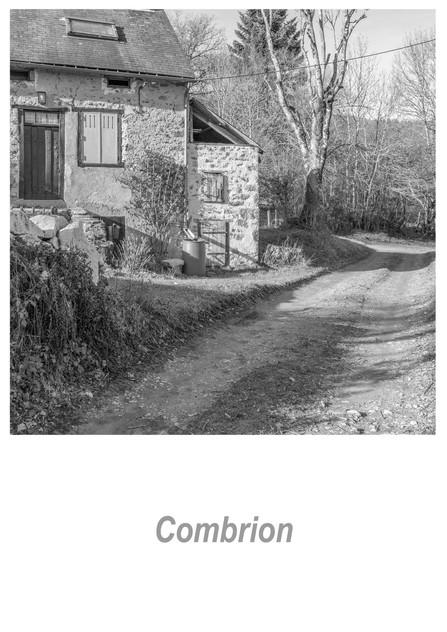Combrion 1.3w.jpg