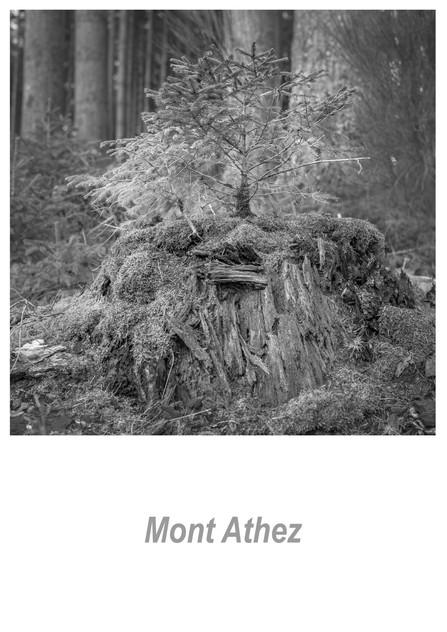 Mont Athez 1.1w.jpg