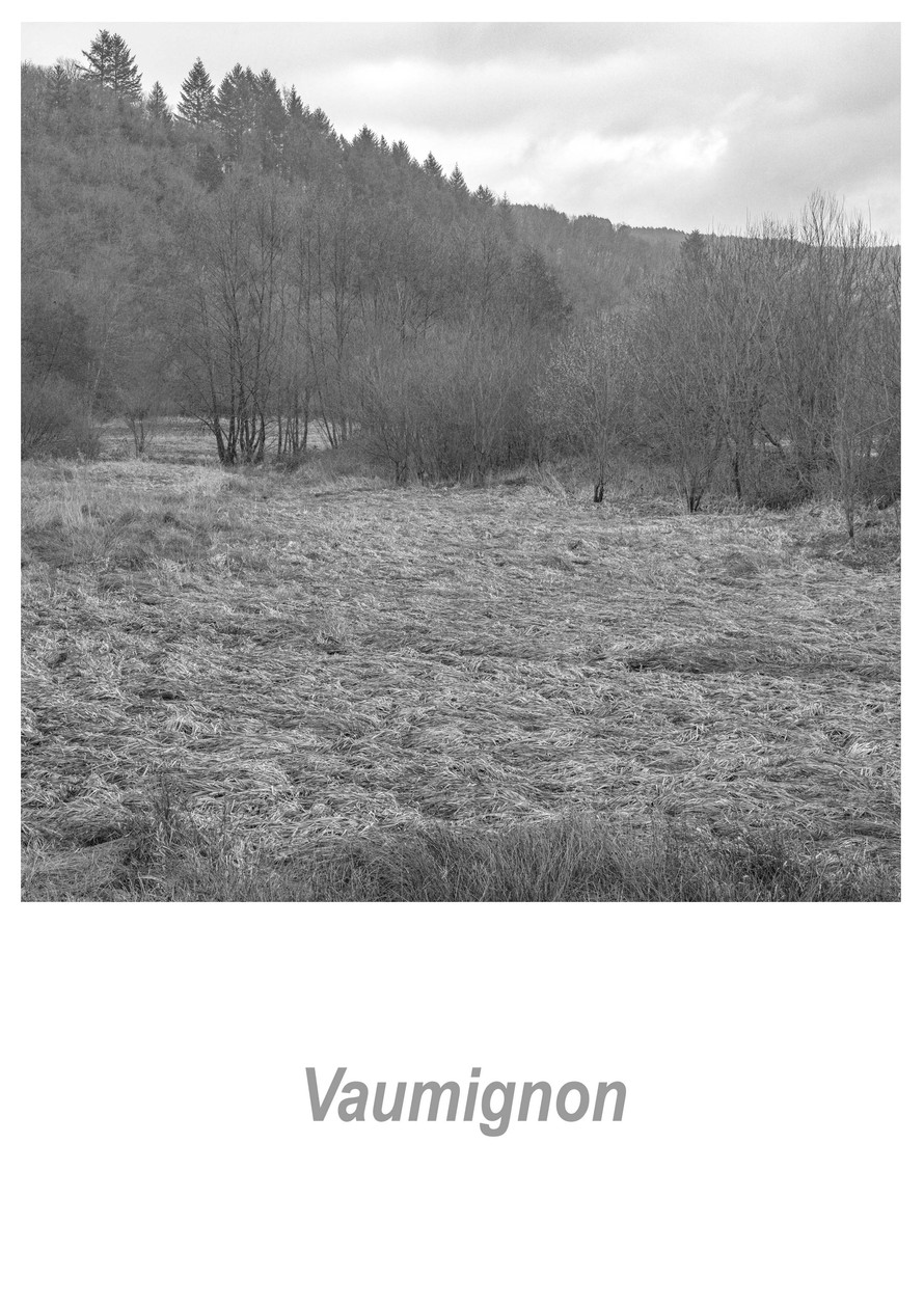 Vaumignon 1.11w.jpg