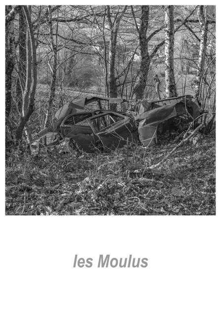 les Moulus 1.5w.jpg
