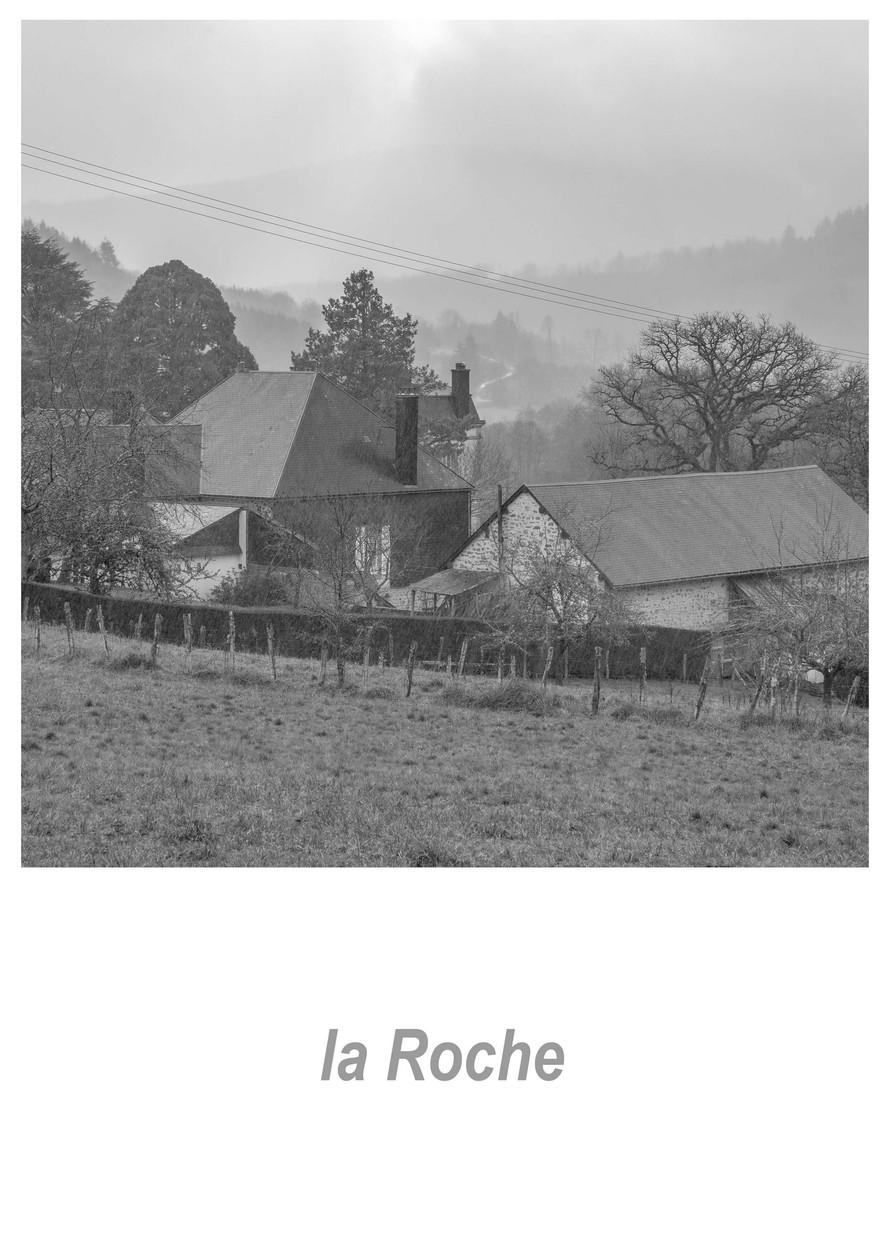 la Roche 1.9w.jpg