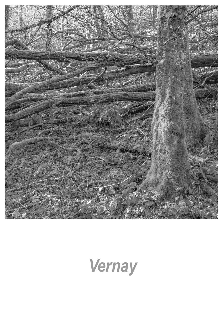 Vernay 1.3w.jpg