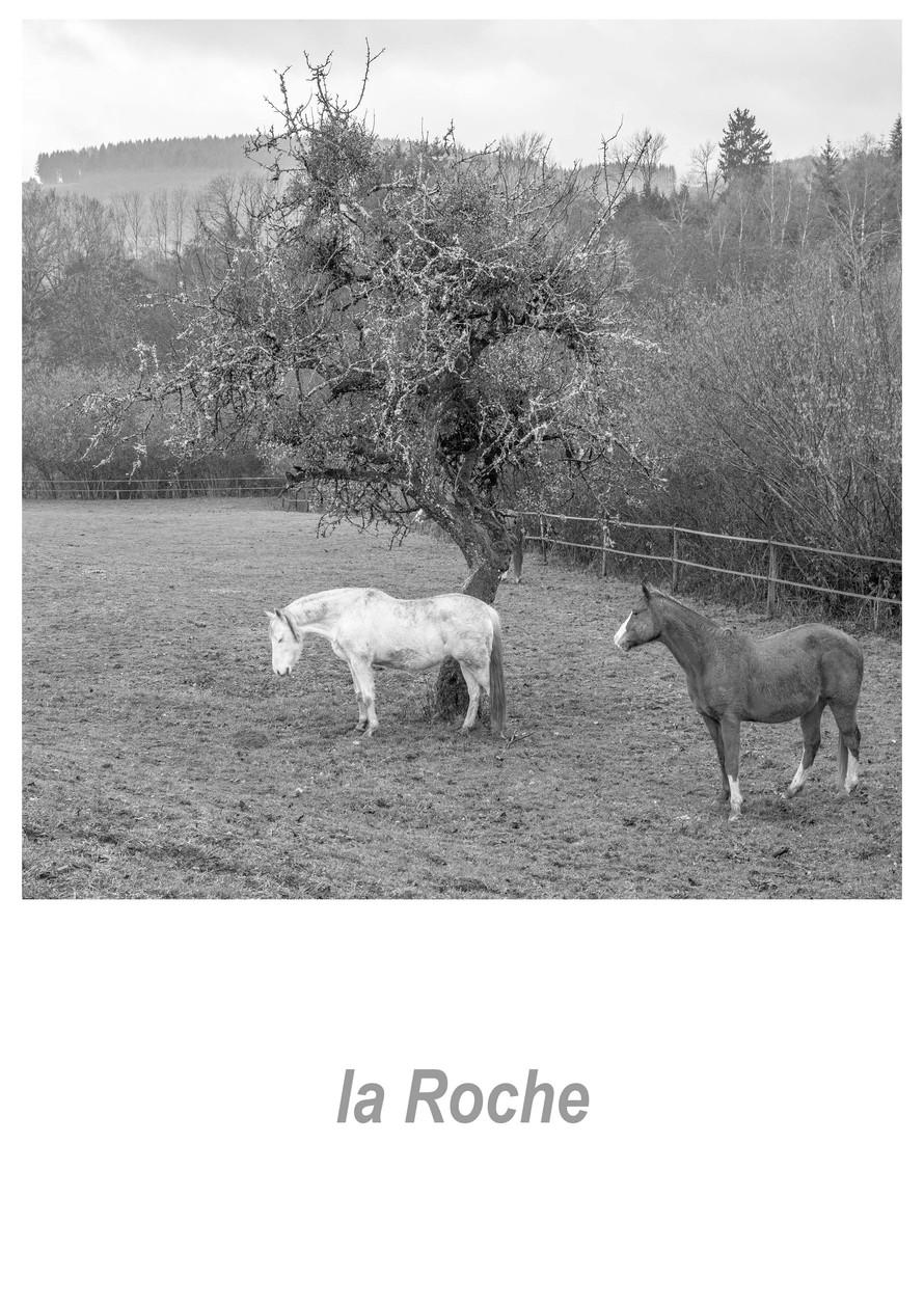 la Roche 1.8w.jpg