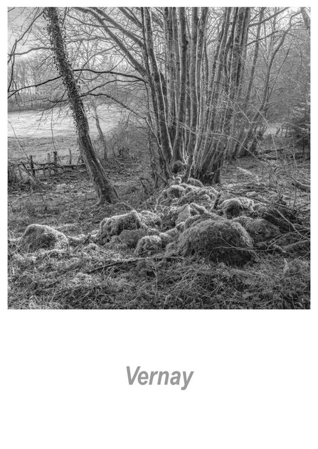 Vernay 1.8w.jpg