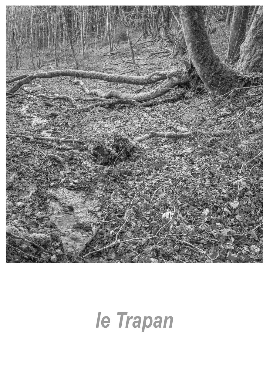 le Trapan 1.1w.jpg