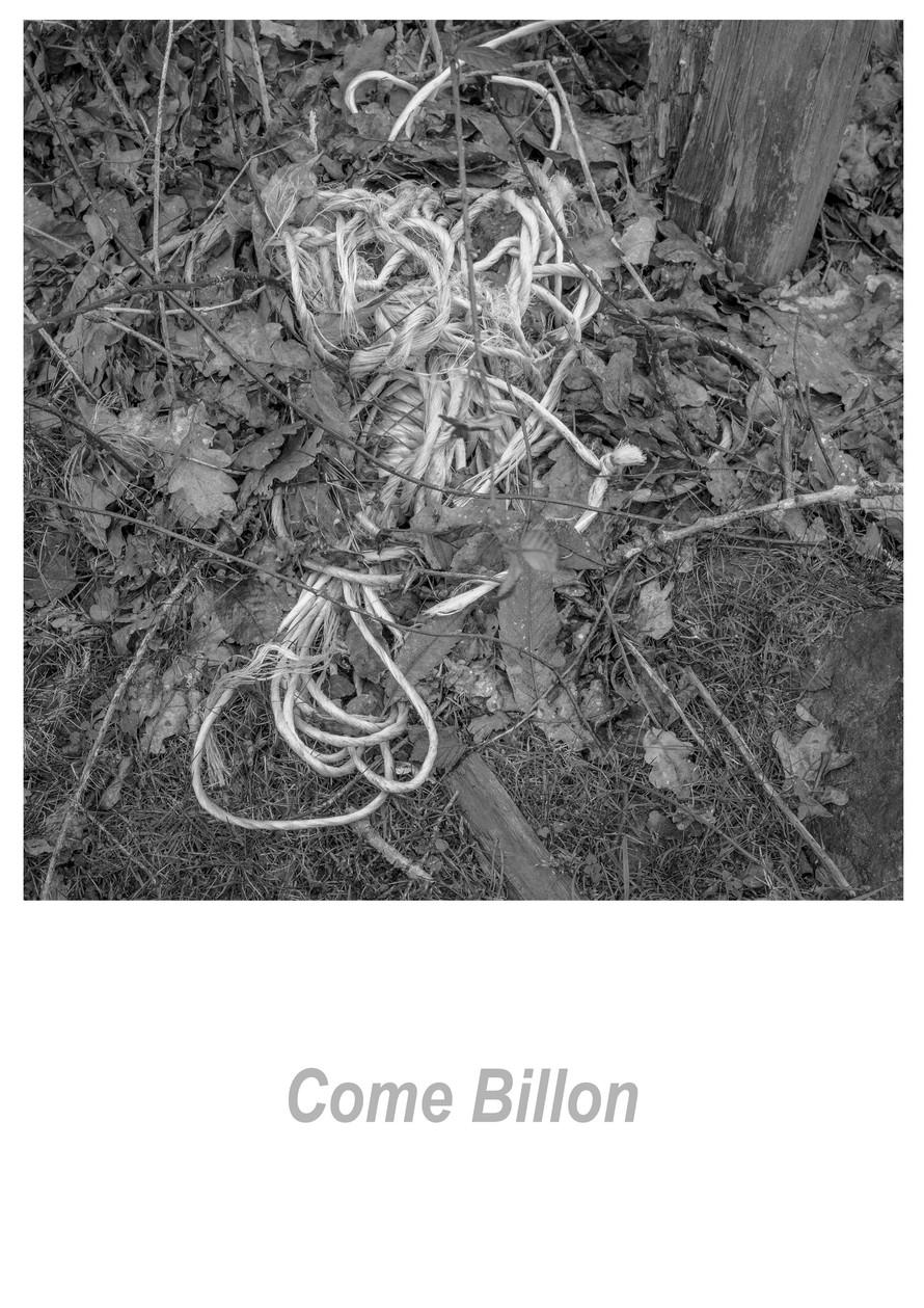 Come Billon 1.2w.jpg