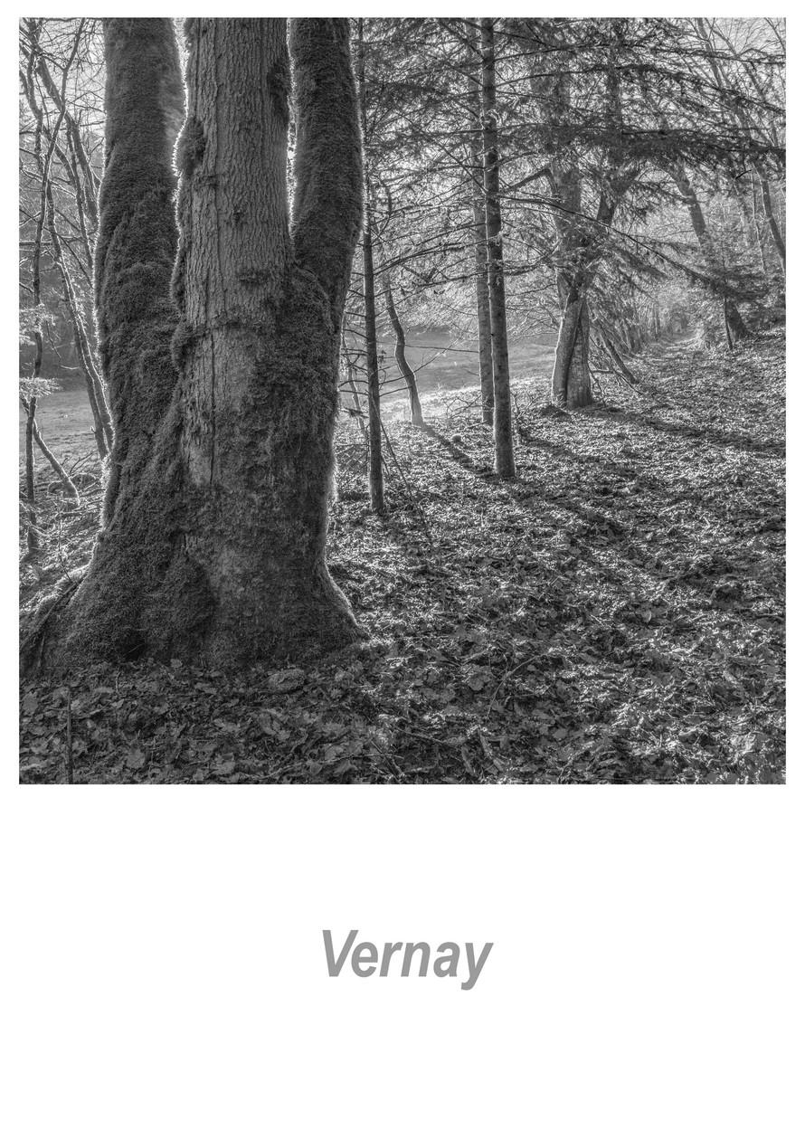Vernay 1.7w.jpg