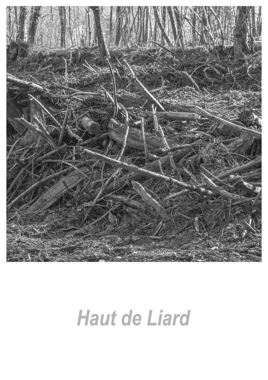 Haut de Liard 1.5w.jpg