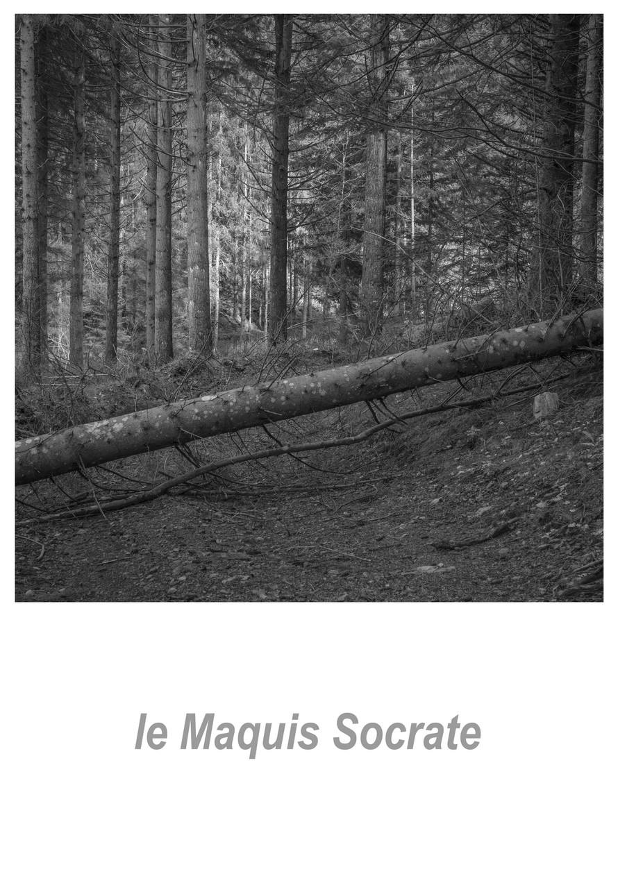 le Maquis Socrate 1.3w.jpg