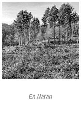 En Naran 1.6w.jpg