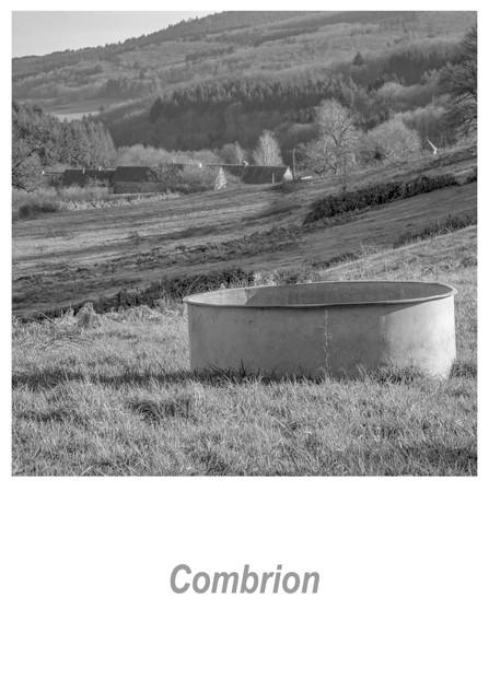 Combrion 1.1w.jpg