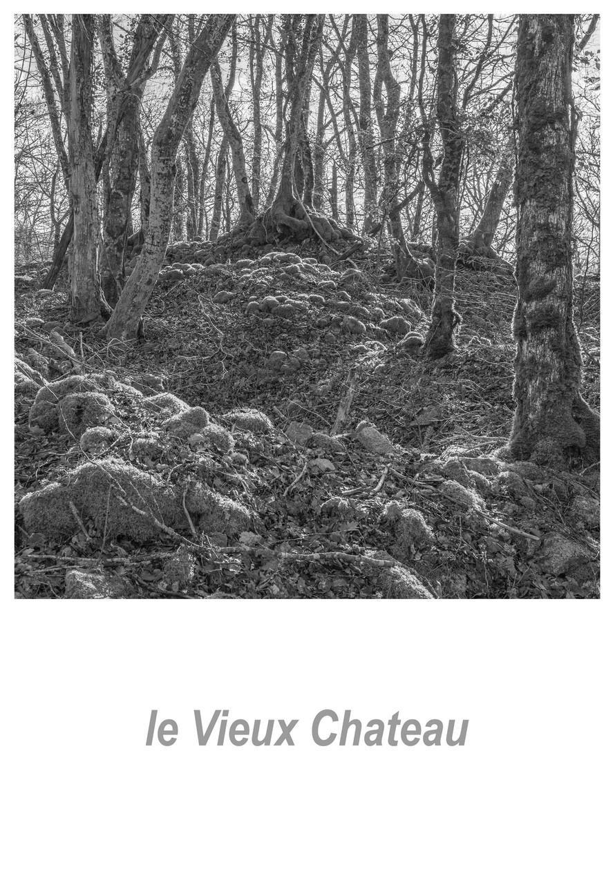 le Vieux Chateau 1.4w.jpg