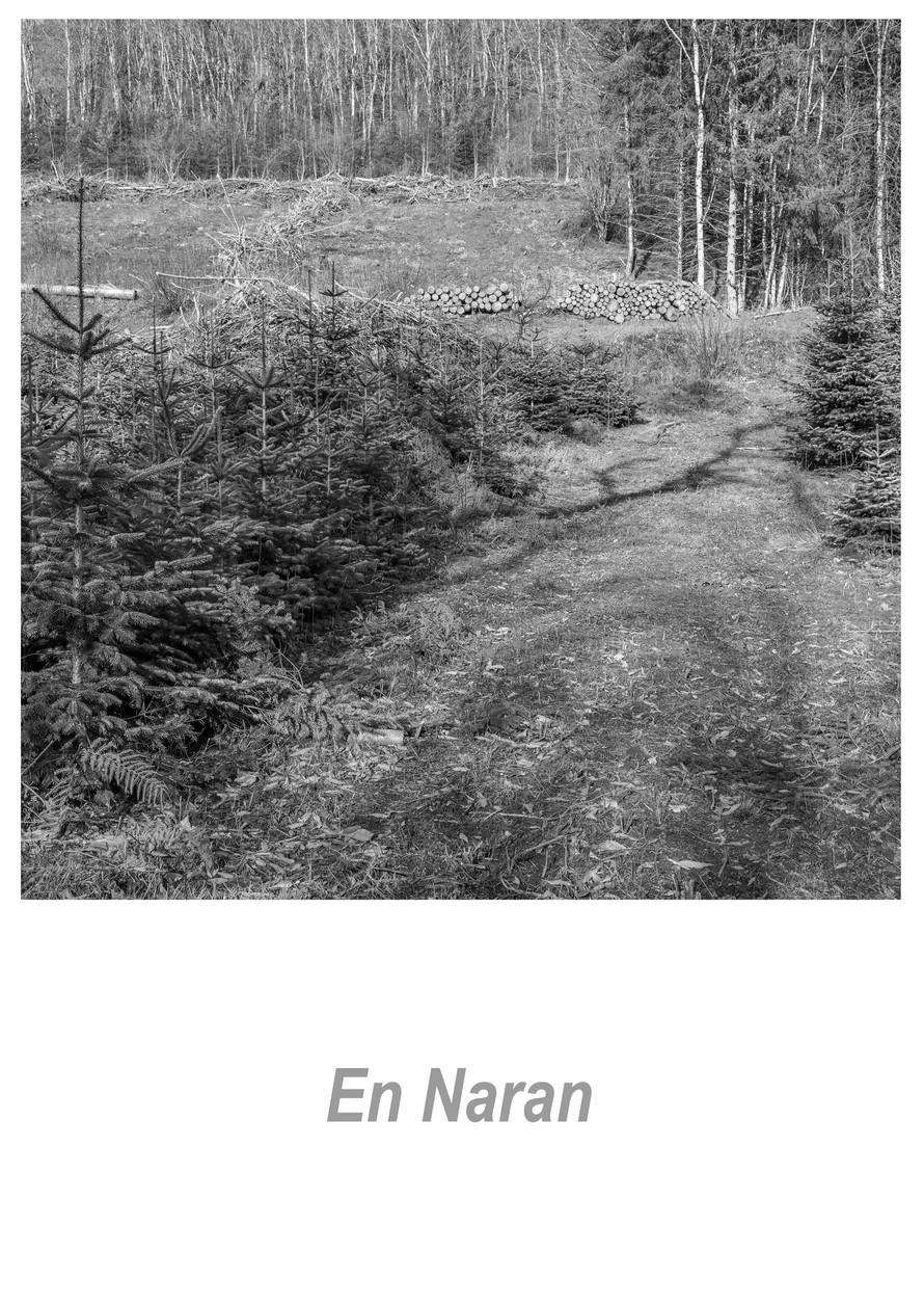 En Naran 1.1w.jpg