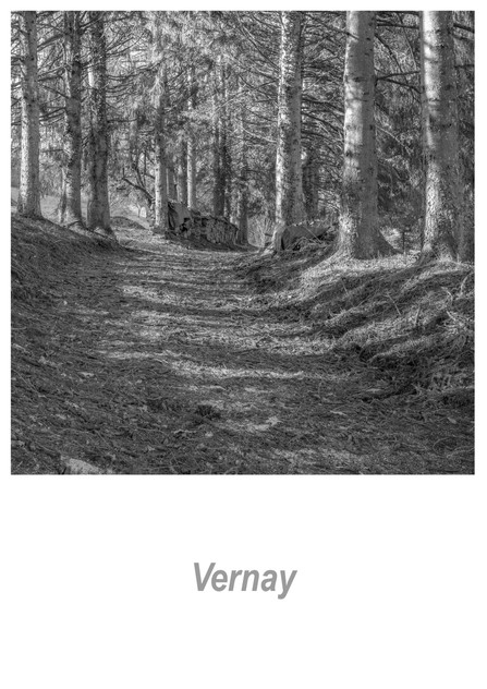 Vernay 1.1w.jpg