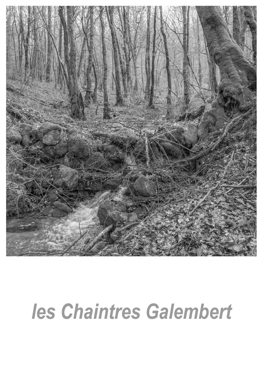les Chaintres Galembert 1.4w.jpg
