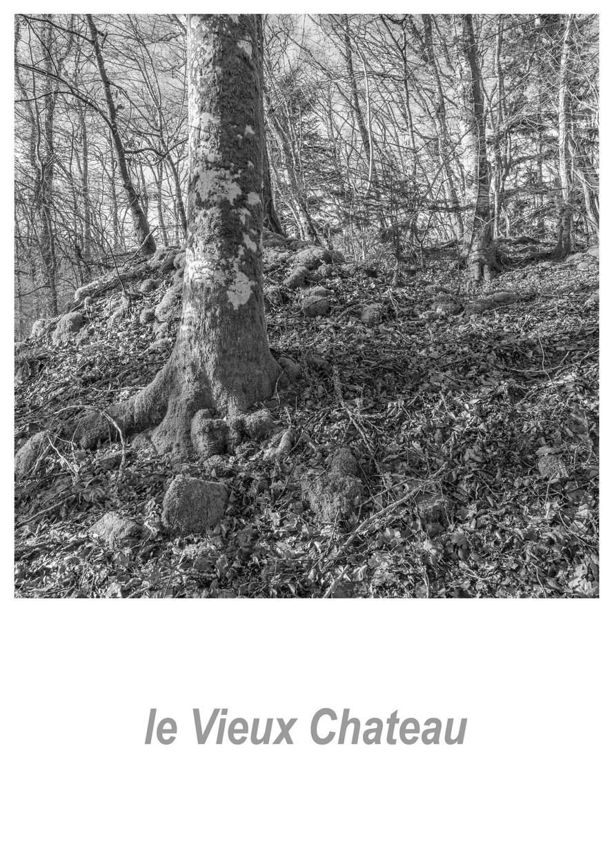le Vieux Chateau 1.5w.jpg