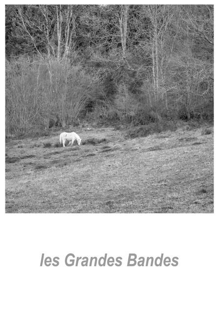 les Grandes Bandes 1.7w.jpg
