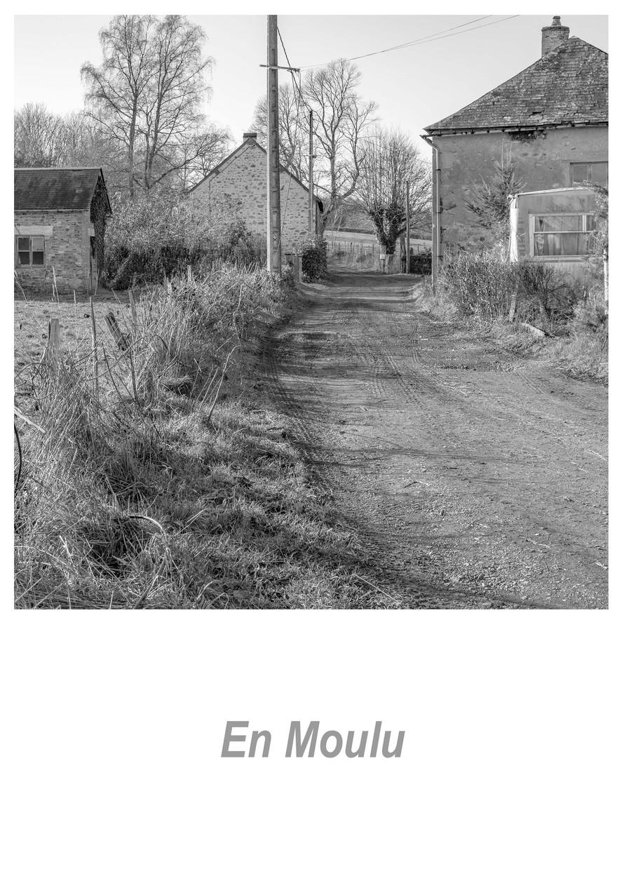 En Moulu 1.2w.jpg