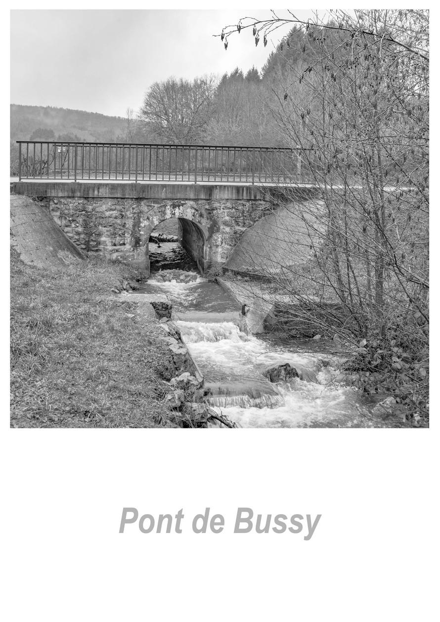 Pont de Bussy 1.2w.jpg