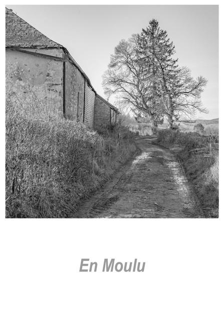 En Moulu 1.4w.jpg