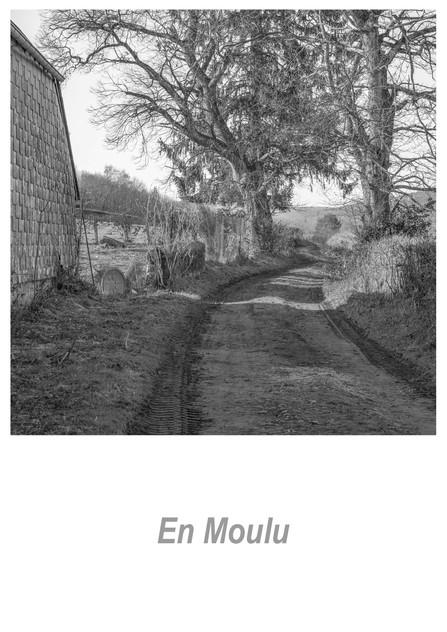 En Moulu 1.6w.jpg