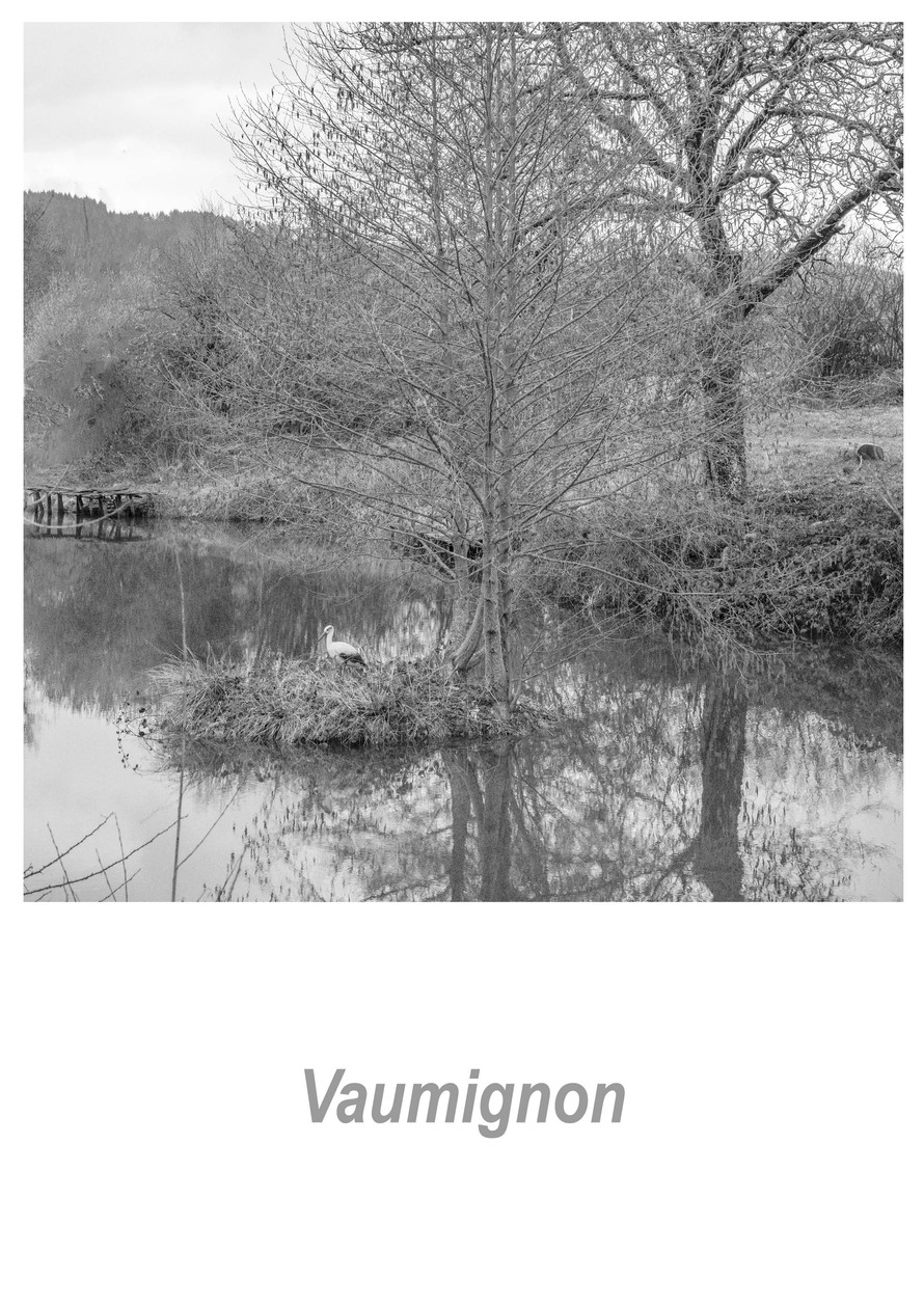 Vaumignon 1.10w.jpg