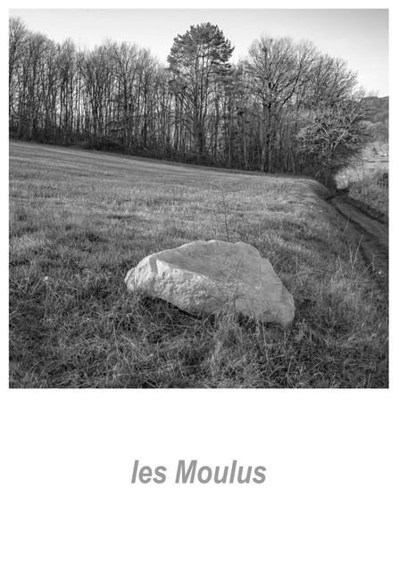 les Moulus 1.3w.jpg