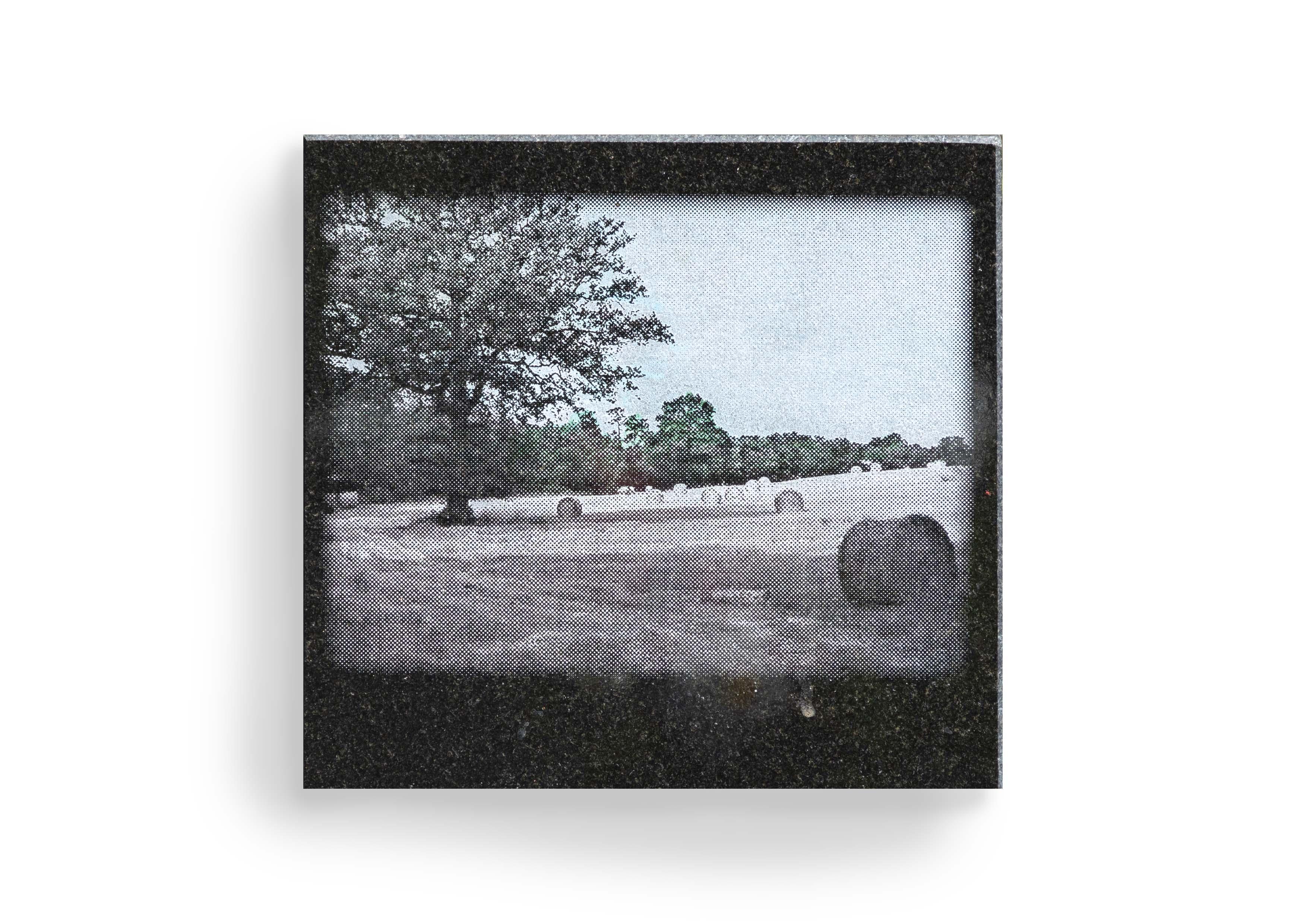 Paysages_éternels_38w
