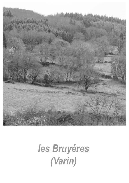 les_Bruyéres_-_Varin_1w.jpg