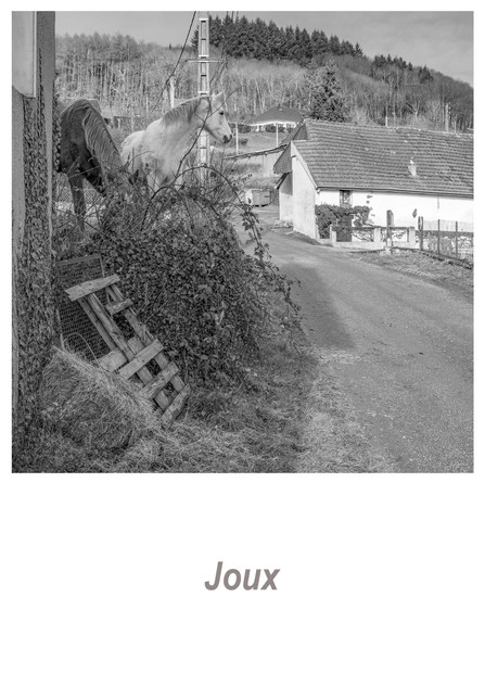 Joux 1.3w.jpg