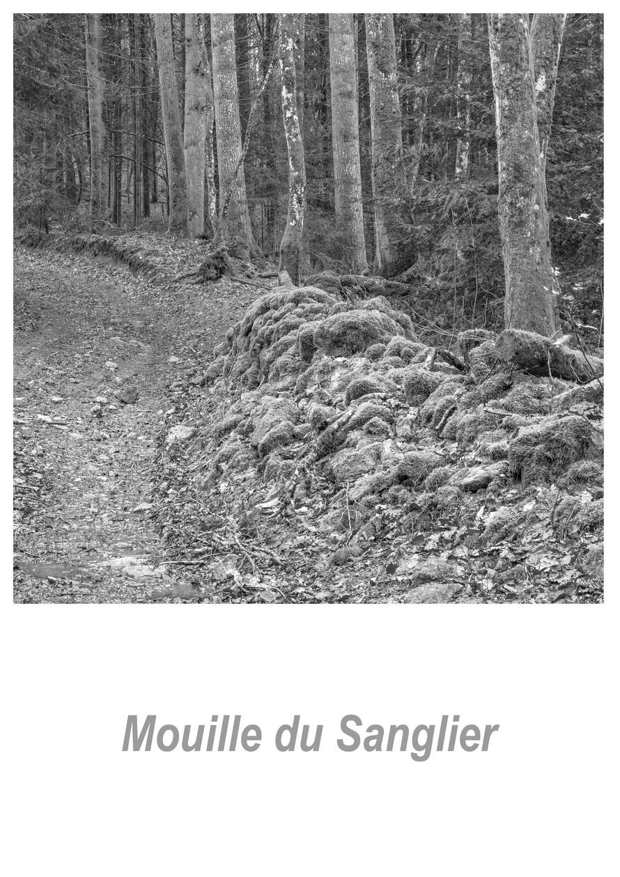 Mouille du Sanglier 1.3w.jpg