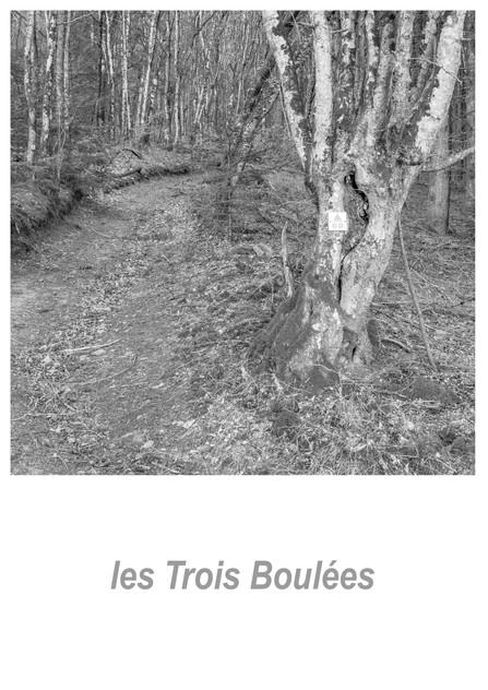 les_Trois_Boulées_1.10w.jpg